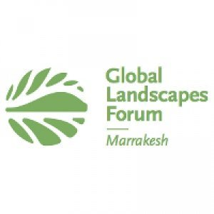Global Landscapes Forum 2016 Marrakesh